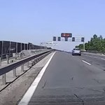 Az M0-son áttotyogó kacsacsalád okozott majdnem balesetet – videó