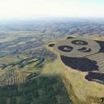 A világ legcukibb naperőművét építik