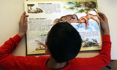 Egyetemisták mentorálnak jövő szeptembertől általános iskolásokat