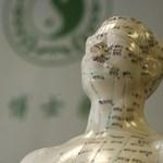Meghökkentő módon támogatja a magyar kormány a kínai gyógyászatot