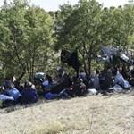 40 óra alatt kész a hamis szír útlevél Törökországban