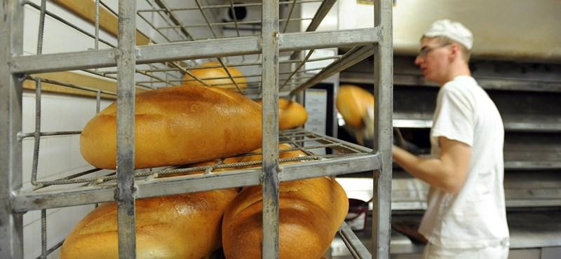 Itt az új kenyér: mennyibe fog fájni a minőség?