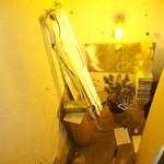 Lopott árammal működött a kántorjánosi startup marihuánakertészet - videó, fotó