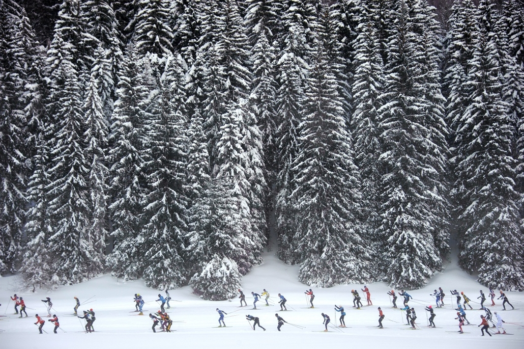 Fák világnapja - FRANCE, Lamoura : Participants compete during the Nordic Transjurassienne skiing race on February 10, 2013 in Lamoura, eastern France.