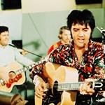 Meghalt Elvis Presley gitárosa