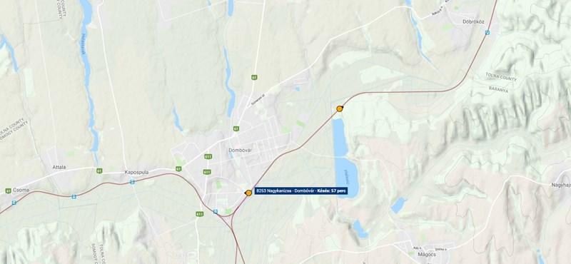 Sínre dőlt fa miatt késnek a vonatok Dombóvár és Gyékényes között