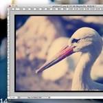 Instagram akciók a Photoshophoz, ingyen
