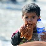 Brutális sors vár az iraki gyerekekre