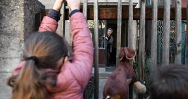 Óvatos ölelések és a felszabadultság ritka pillanatai - a gyerekektől is sok mindent elvett a járvány