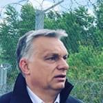 Orbán filmtörténeti utalásokkal terhesen evett Túró Rudit