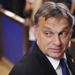 Charles Gati: Orbán megalázkodva is megállapodik az IMF-fel