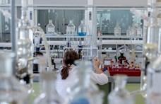Hatékonyabb lehet a leukémia kezelése egy magyar kutatásnak köszönhetően