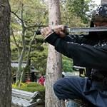 Kicsit félreértettek egy hirdetést - tömegével jelentkeztek nindzsának Japánba