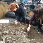 Egy közel 3000 évvel ezelőtti járvány áldozataira bukkanhattak Tiszafürednél