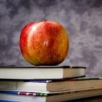 Ennyit keresnek januártól a pedagógusok: itt vannak az adatok