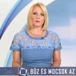 5,5 millióba fájt a TV2 hajléktalangyalázó riportja