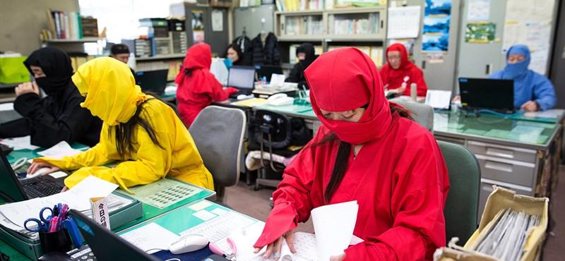 A kényszer legyűri a hagyományt, Japán is megnyílik a külföldi munkavállalók előtt