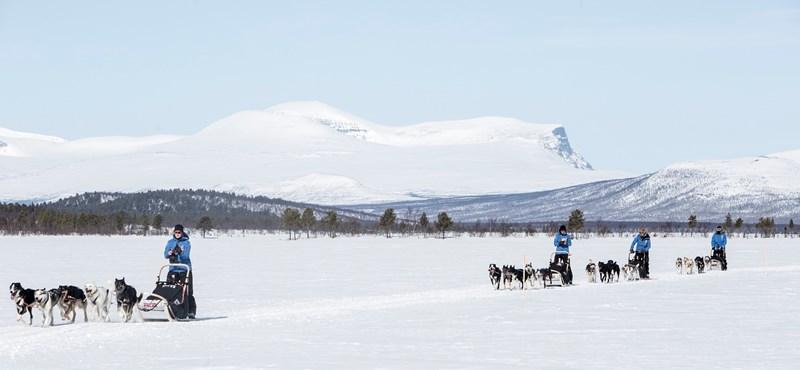 Magyarok is indulnak a 300 kilométeres sarkvidéki kutyaszános túrán