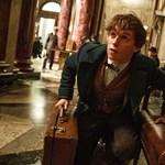 Milyen Potter? J.K. Rowling újra elvarázsolta a nézőket