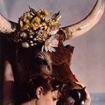 Angol úrhölgyek, mint istennők és nimfák 1935-ből