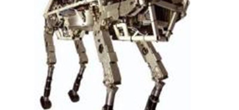 Videó: a Pentagon gepárdja a leggyorsabb robot