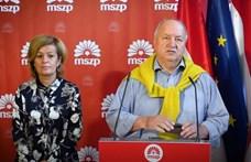 Parlamenti vizsgálóbizottságot kezdeményez az MSZP a kórházi ágyfelszabadítások ügyében