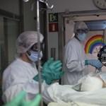 Már több mint 443 ezren haltak meg a járványban