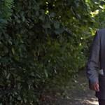 Magyar milliárdosok iskolája: diploma sem kell a meggazdagodáshoz?