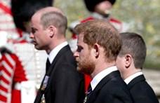 Elegük van: a Buckingham-palotában kezdenek besokallni Harrytől és Meghan Markle-tól