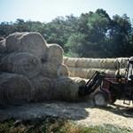 Rekordszámba megy a mezőgazdaság teljesítménye