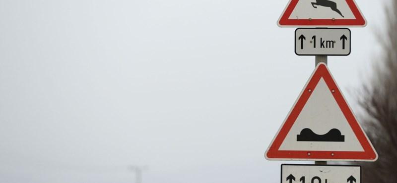 Legyen óvatos az utakon, párzanak az őzek!