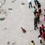 Mérleghintákat szereltek az amerikai-mexikói határkerítésre, hogy együtt játszhassanak a gyerekek