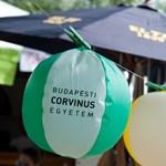 Felvételi ponthatárok 2011: minden eddigi rekordot megdöntött a Corvinus