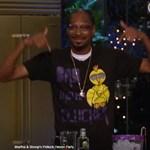 Már előzetese is van Snoop Dogg különleges főzőműsorának