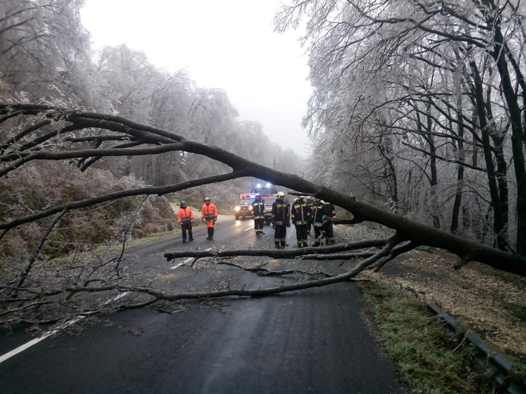 mti. ónos eső, 2014.12.01. tél 2014, Pilisszentkereszt, Kidőlt fák akadályozzák a forgalmat Pest megyében