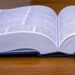 Nyaraláshoz vagy nyelvtanuláshoz kerestek fordító appot?