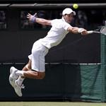 Wimbledon: Gyokovics összetörte az ütőjét, de továbbment