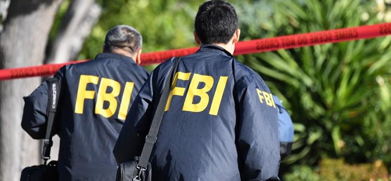 Az FBI segítségével Amerikában fogták el egy bűnszervezet magyar vezetőjét