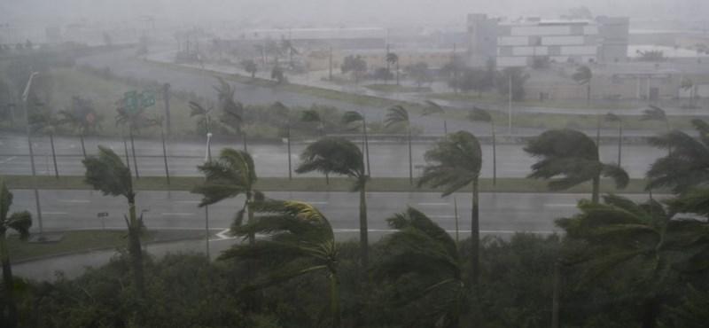 Közel 15 millió dollárt gyűjtöttek a sztárok a hurrikánok károsultjainak