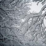 Fehér lesz a karácsony?
