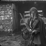 A francia mozik is játsszák Tarr Béla torinói lovát