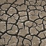 Aszály fenyegeti a hazai mezőgazdaságot